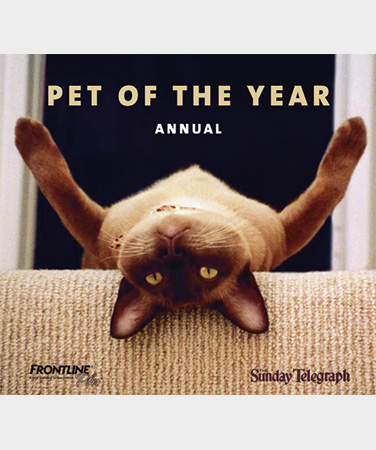 PET OF THE YEAR I