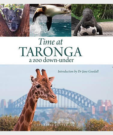 TIME AT TARONGA